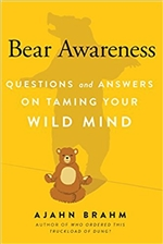 Bear Awareness: Questions and Answers on Taming Your Wild Mind  By: Ajahn Brahm