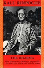 Dharma: That Illuminates All Beings  By: Kalu Rinpoche